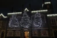 Tree of Lights 2020