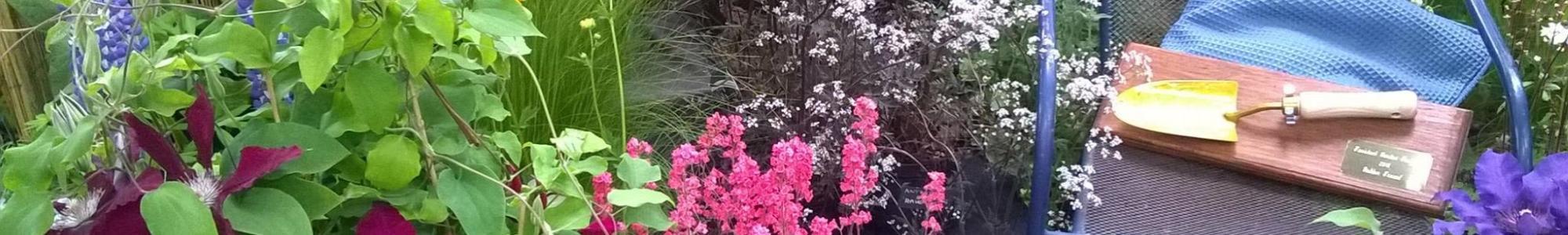 Tavistock Garden Festival Display Garden