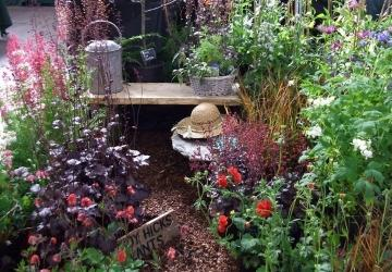 Wendy Hicks Plants