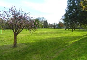 The Meadows in Tavistock