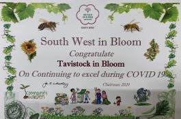 Tavistock in Bloom