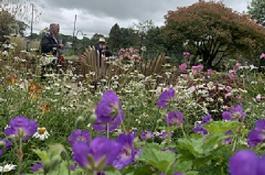Tavistock Sensory Garden